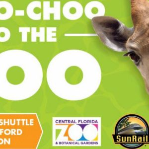 Choo Choo to the Zoo Returning this Summer